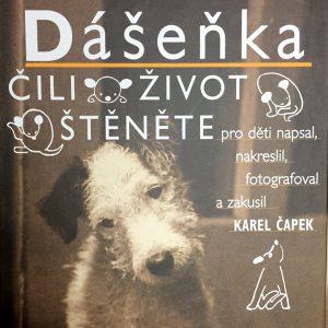 Dášenka, Karel Čapek.