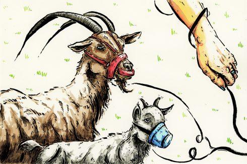 Patálie Simony Ó.: Díl čtvrtý – Zase o kozách