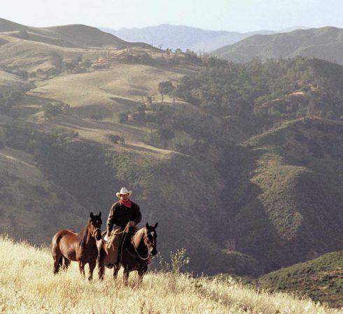 Monty Roberts: muž, který umí mluvit s koňmi