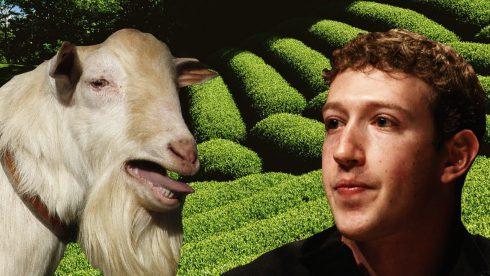 V roce 2011 Mark Zuckenberg jedl jen to co si sám zabil.