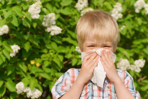 Alergie na vzestupu – hrozí nám nová civilizační choroba?