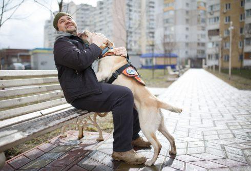 Hero´s Companion: Jak psi na Ukrajině pomáhají obětem války?