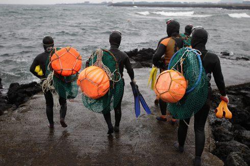 Volné potápění: mír najdete pod hladinou